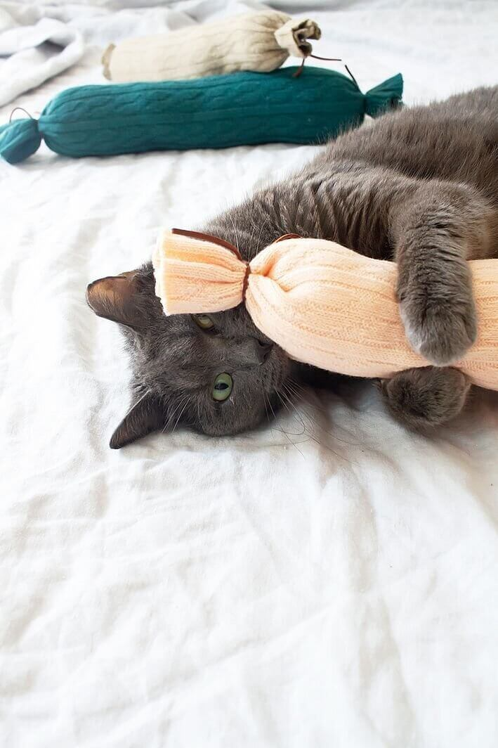 make cat toys out of socks and pillows